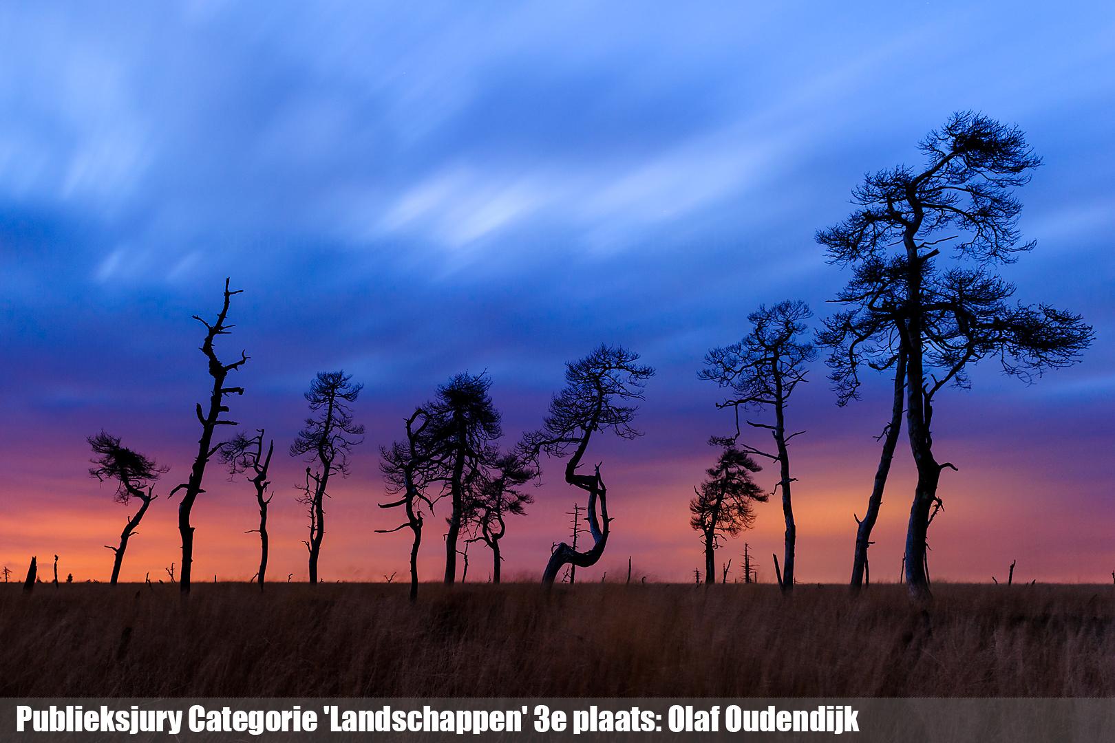 Publieksjury Categorie 'Landschappen' 3e plaats: Olaf Oudendijk